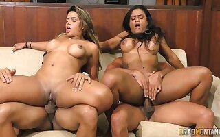 Hot latina super hookers contrive mating